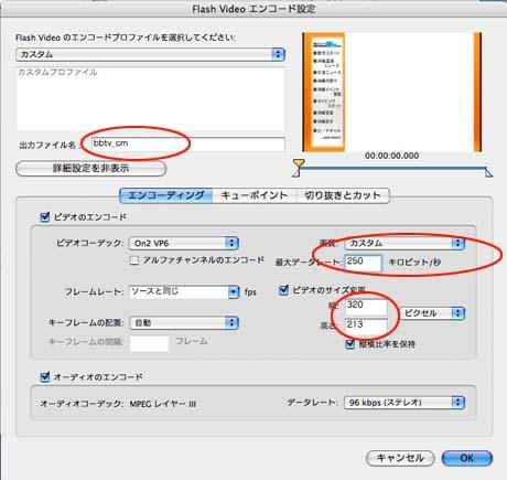 Flash Video Encoder03