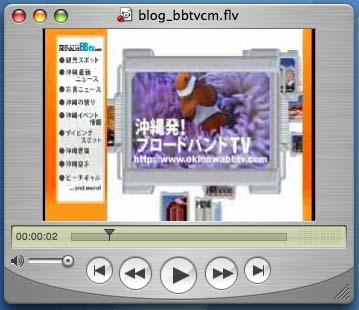 Flash Video Encoder05